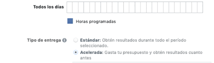 Programación Facebook Ads